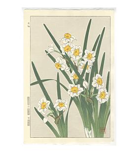 shodo kawarazaki, narcissus, flower print