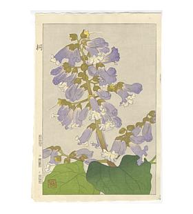 shodo kawarazaki, paulownia, flower print