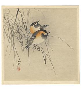 koson ohara, tot birds, bird and flower, natural world, kacho-ga