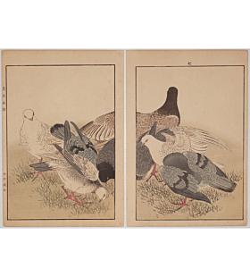 Keinen Imao, Pigeons, Birds and Flowers Album, Autumn