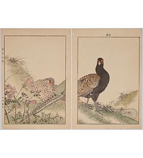 Keinen Imao, Azalea, Fern, and Pheasant, Birds and Flowers Album, Spring