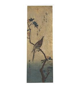 hiroshige I Utagawa, Long-tailed Bird and Maple, kacho-ga