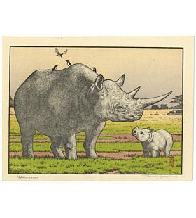 toshi yoshida, rhinoceros, wild life