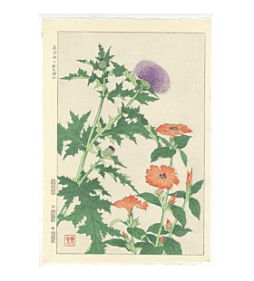 Shodo Kawarazaki, Thistle and Ganpi, Flower Print, Botanical