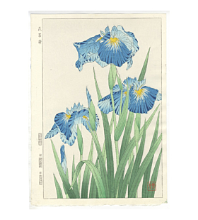 shodo kawarazaki, irises, flower print, botanical