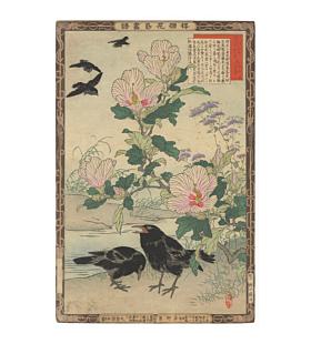 bairei kono, Raven and Korean Rose, Barei's Album of Flowers and Birds(楳嶺花鳥画譜)
