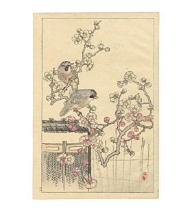 bairei kono, Eurasian Jay and Plum Blossoms, Four Seasons, Bairei's Album of Flowers and Birds(楳嶺花鳥画譜 春夏秋冬)