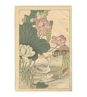 bairei kono, Geese and Lotus, Four Seasons, Bairei's Album of Flowers and Birds(楳嶺花鳥画譜 春夏秋冬)