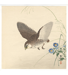 Koson Ohara, Jumping Quail and Chrysanthemums