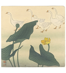 kan'un, Lotus and Geese, bird and flower