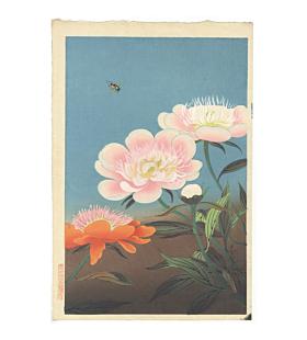 bakufu ono, Peony and a Horsefly, flower, botanical