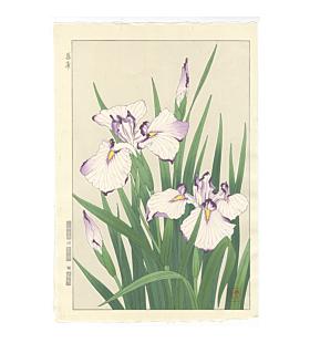 shodo kawarazaki, iris, flower print