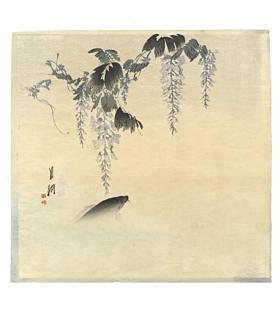 gekko ogata, carp, wisteria