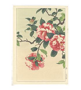 shodo kawarazaki, camellia, flower print, botanical