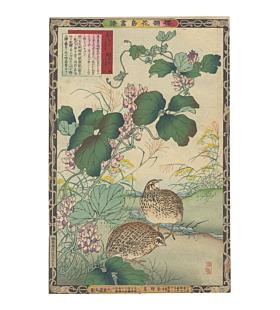 Bairei Kono, Vine and Quail, Album of Flower and Birds