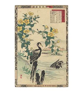 bairei kono, Cormorants and Japanese Marigold Bush, kacho-ga