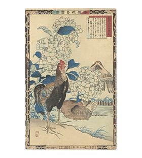 Shamo Chickens and Hydrangea, bairei kono, kacho-ga
