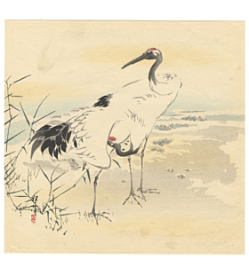 cranes, bird and flower, good luck