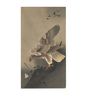 Koson Ohara, Eagle with Outspread Wings