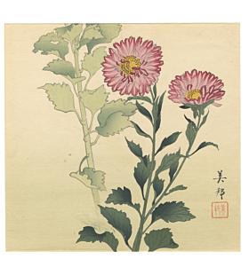 purple chrysanthemum, flower print, plant, decorative, interior design