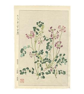 shodo kawarazaki, Chinese Milk Vetch, flower print, botanical