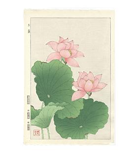 shodo kawarazaki, pink lotus, flower print, botanical