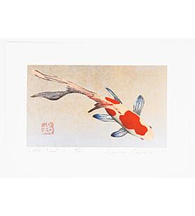 kunio kaneko, little comet, gold fish, contemporary art
