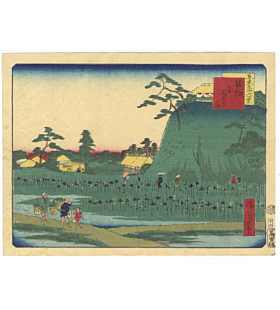 shosai ikkei, iris garden, tokyo landscape