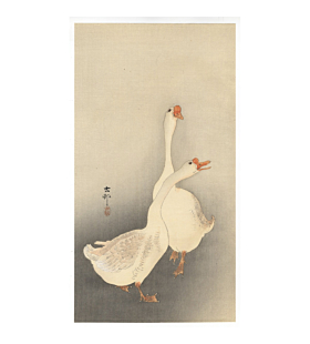 koson ohara, Chinese Geese, birds, kacho-ga