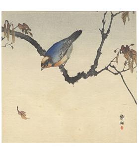 Seiko Okuhara, Blue Bird on a Branch, Kacho-ga