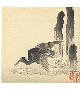 nanryo suzuki, cormorant, bird print