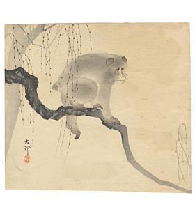 koson ohara, monkey on a branch