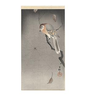 koson ohara, bird and spider