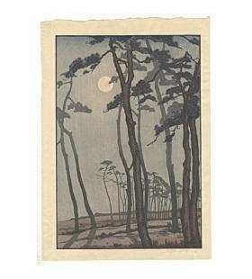 mokuchu urushibara, bournemouth, moonlight, nature