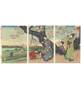 chikanobu yoshu, sumida river, cherry blossom, sakura, kimono