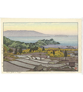 toshi yoshida, rice field, landscape