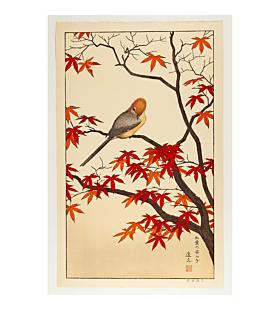 toshi yoshida, autumn, birds of the seasons