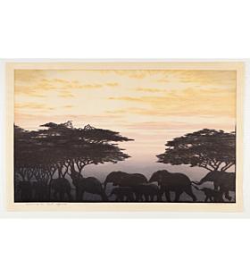 toshi yoshida, evening in east africa