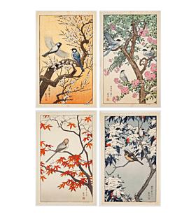 toshi yoshida, Spring, Summer, Autumn, Winter, birds of the seasons