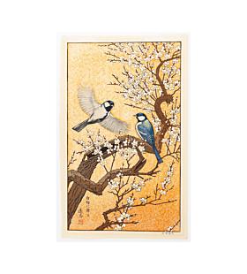 toshi yoshida, spring, bird, plum tree, japanese woodblock print