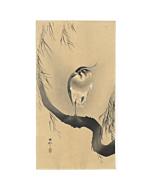 koson ohara, northern lapwing, bird print