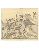 Hokusai Katsushika, Manga, Geese, Birds, Animals, Original Japanese woodblock print