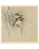 Koson Ohara, Tit Birds on Blades of Grass