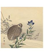 bird and flower, kacho-ga, nature