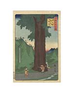 hiroshige II, cedar tree, landscape, japanese woodblock print, japanese antique