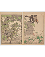 Keinen Imao, Soy, Shrike, and Meguro, Birds and Flowers Album, Autumn