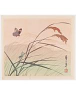 mokuchu urushibara, Butterfly and Grasshopper