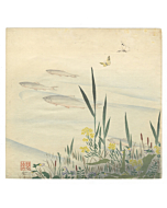zeshin shibata, sweetfish, fish, flowers, botanical