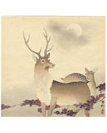 Koson Ohara, Two Deer among Maple Leaves, Moonlit Night