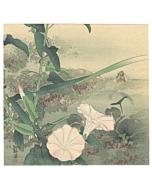 Kogyo Tsukioka, Morning Glory, Flower Print